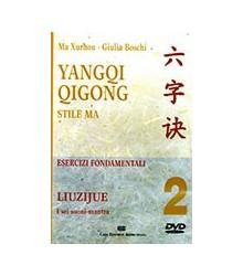 Yangqi Qigong - 2
