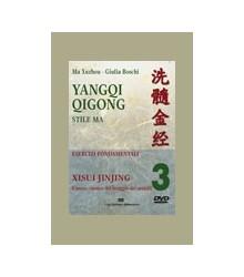 Yangqi Qigong - 3