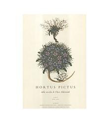 Hortus Pictus