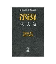 Agopuntura cinese Tomo VI -...