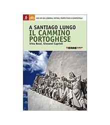 A Santiago Lungo il Cammino...