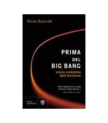 Prima del Big Bang