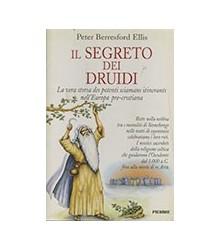 Il Segreto dei Druidi