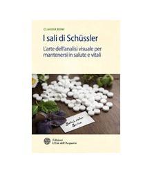 I Sali di Schussler