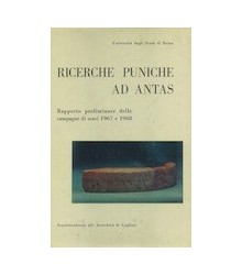 Ricerche Puniche ad Antas